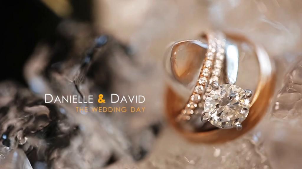 Danielle & David (SDE)